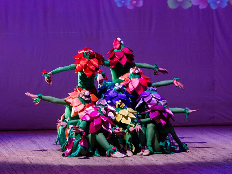 Студия пластики и танца «Like»